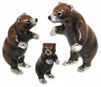 13001 Grizzly Bears