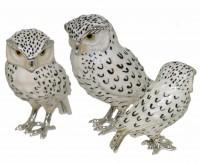13215-Snowy-Owls