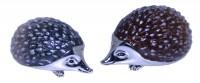 12977-hedgehogs