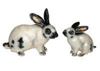12945-rabbits