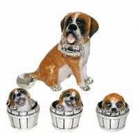 11424-St-Bernard and pups