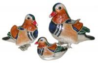 13045-Mandarin-Ducks